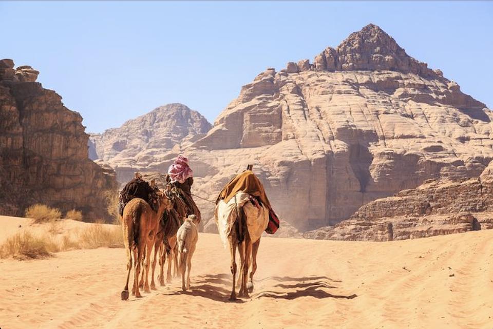 Wadi Rum from Petra - Camels Walking in Wadi Rum